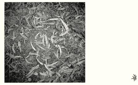 Susurros © Alfredo Velarde-17