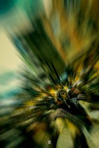 Candelaria © Alfredo Velarde-26