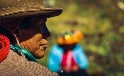 Chumpi © Alfredo Velarde-21