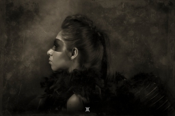 Raven © Alfredo Velarde-11