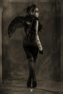 Raven © Alfredo Velarde-3