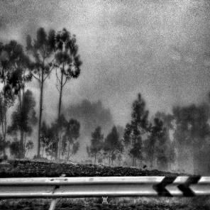 Instante © Alfredo Velarde-6