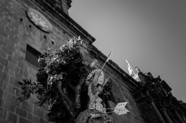 Corpus © Alfredo Velarde-2