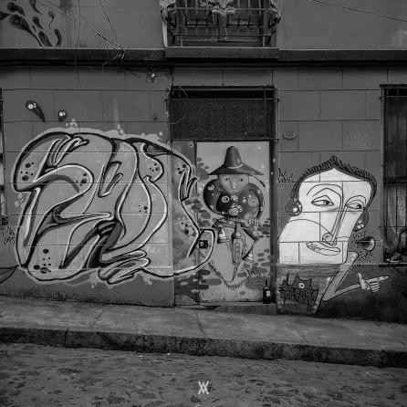 Chile © Alfredo Velarde-11