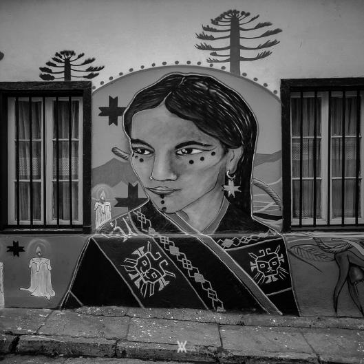 Chile © Alfredo Velarde-12