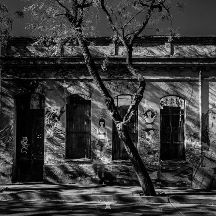 Chile © Alfredo Velarde-44