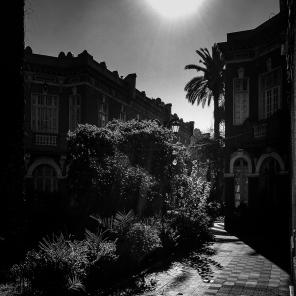 Chile © Alfredo Velarde-46