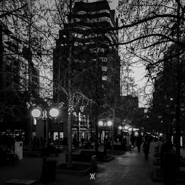 Chile © Alfredo Velarde-67