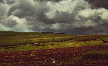 Huaypo © Alfredo Velarde-11