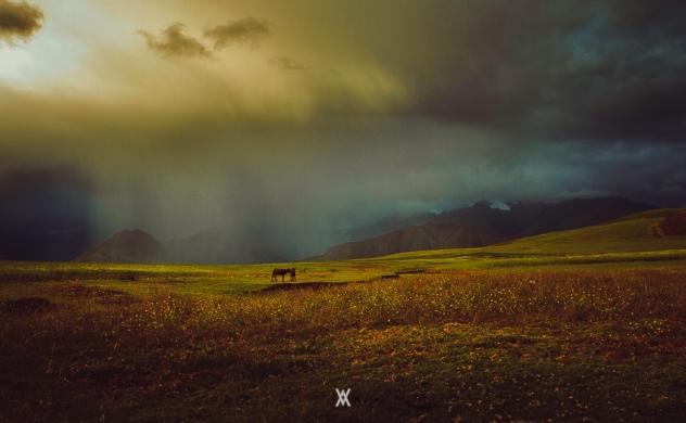 Huaypo © Alfredo Velarde-17