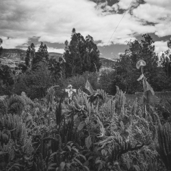 Urubamba © Alfredo Velarde-1
