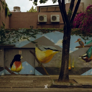 Buenos Aires © Alfredo Velarde-4