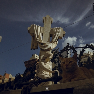 Buenos Aires © Alfredo Velarde-54