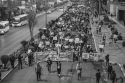 Marcha Nacional 12N (12 de 24)
