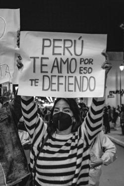 Marcha Nacional 12N (17 de 24)